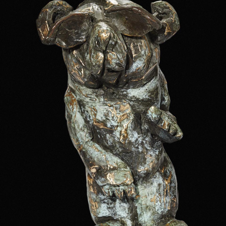 15-09-28_bears_0066a